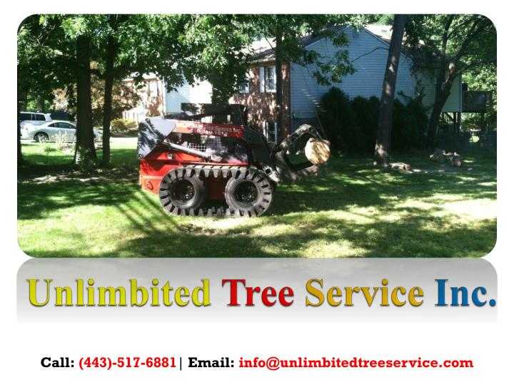 Unlimbited tree service inc