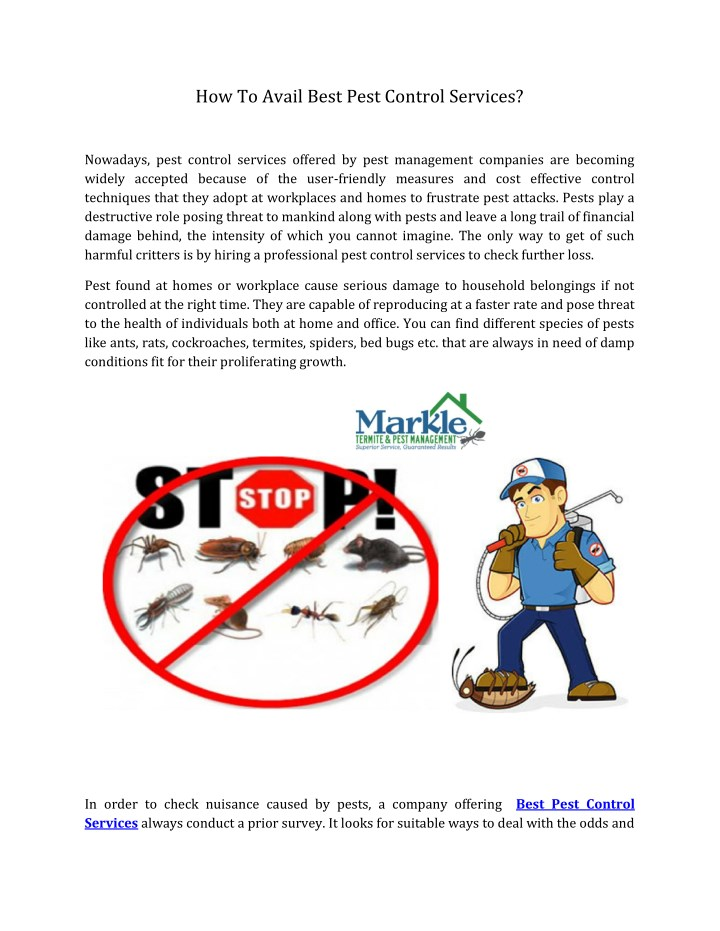 how to avail best pest control services n.