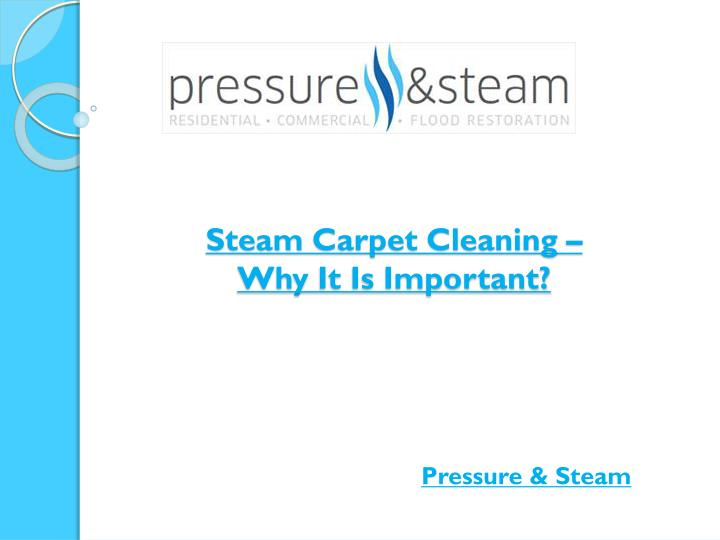 steam carpet cleaning why it is important n.