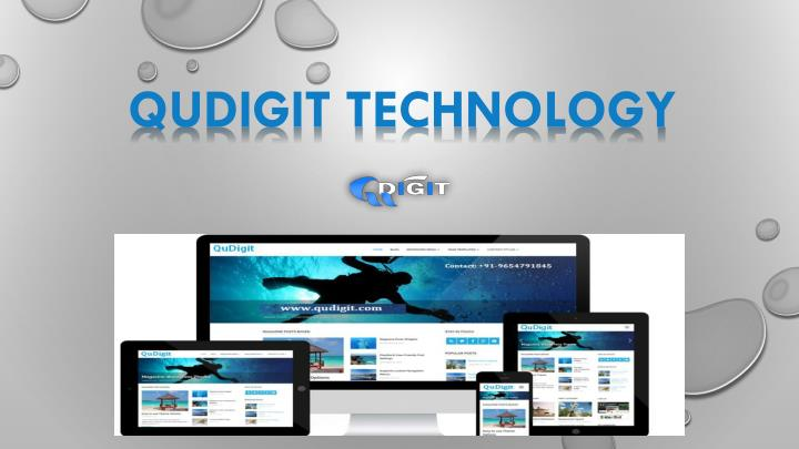 qudigit technology n.