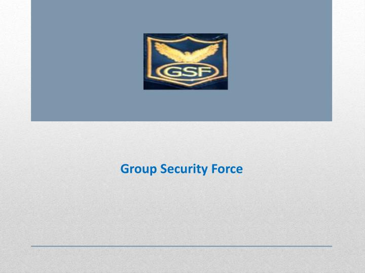 group security force n.