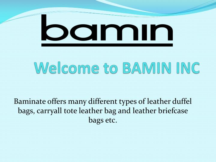 welcome to bamin inc n.
