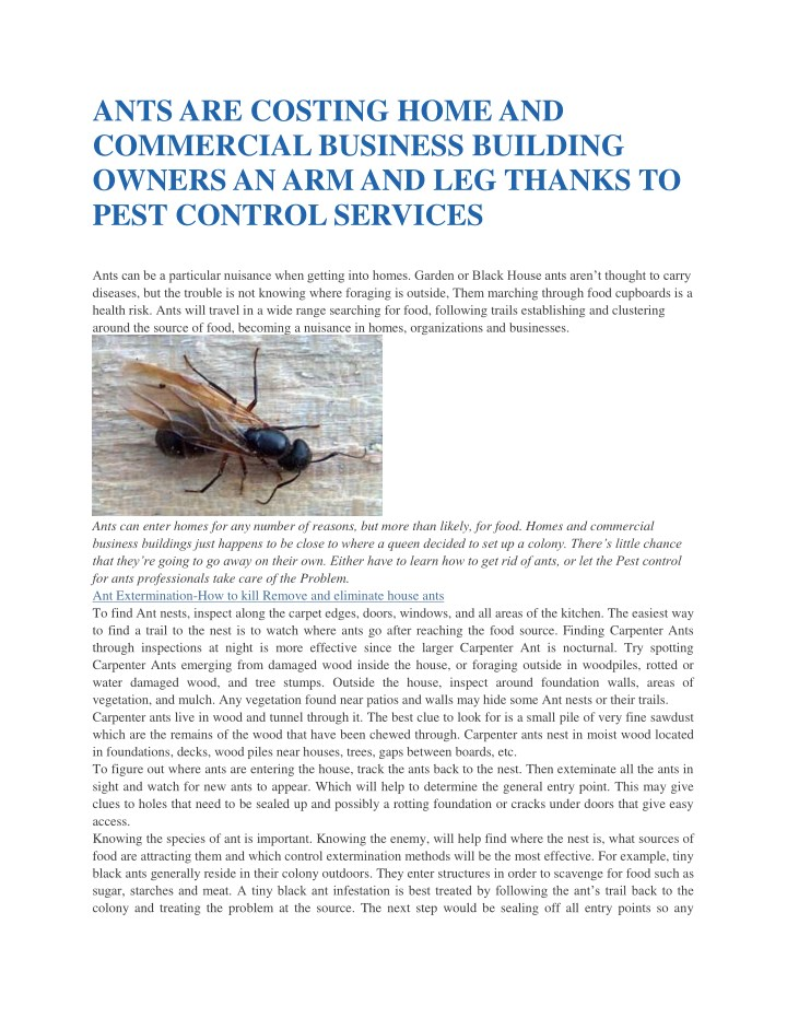 ants are costing home and commercial business n.