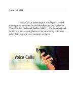 voice call sms