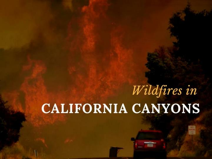wildfires in california canyons n.