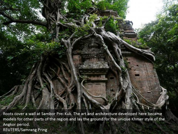 Roots cover a wall at Sambor Prei Kuk. The art and architecture developed here became models for other parts of the region and lay the ground for the unique Khmer style of the Angkor period. REUTERS/Samrang Pring