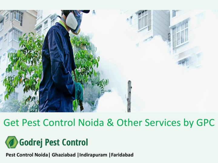 get pest control noida other services by gpc n.