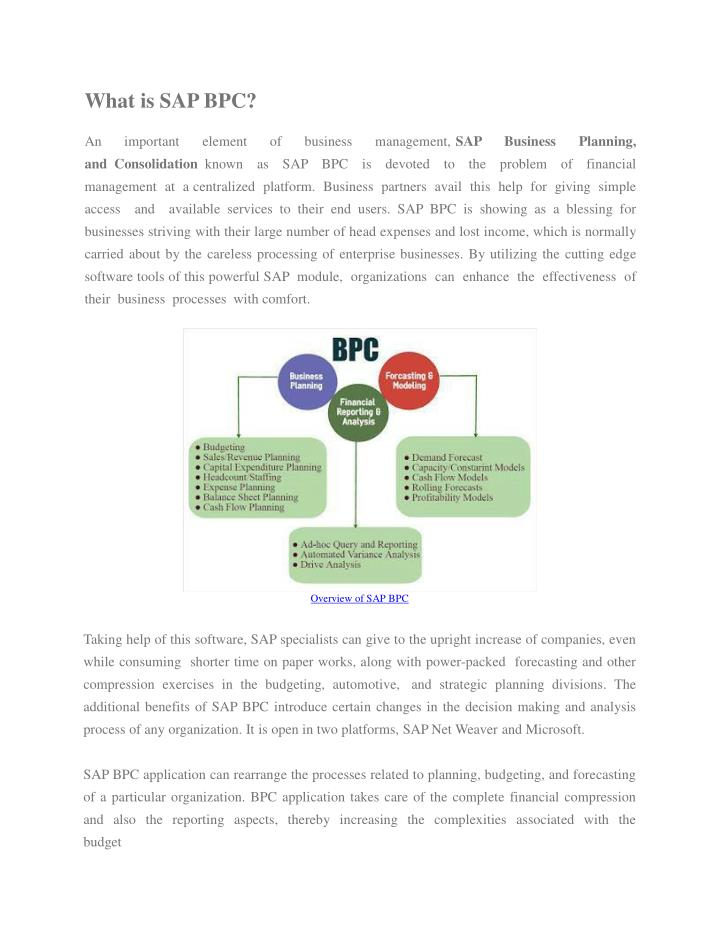 what is sap bpc an important element of business n.