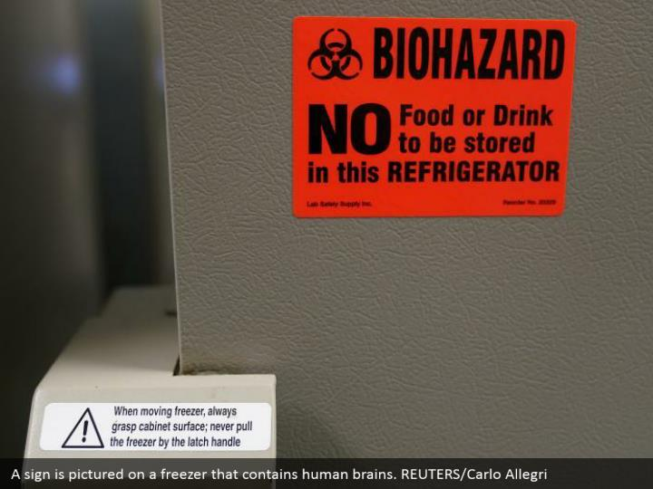 A sign is pictured on a freezer that contains human brains. REUTERS/Carlo Allegri