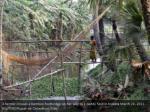 a farmer crosses a bamboo footbridge