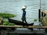 a worker walks on a narrow bamboo bridge towards