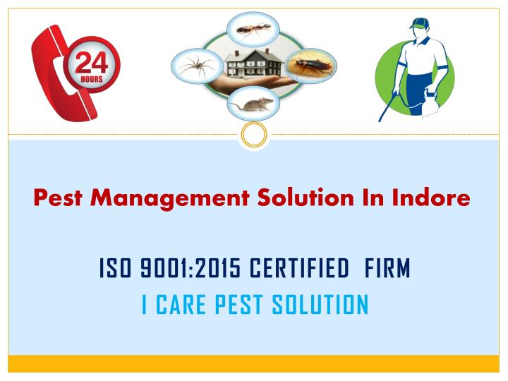 pest management solution in indore n.