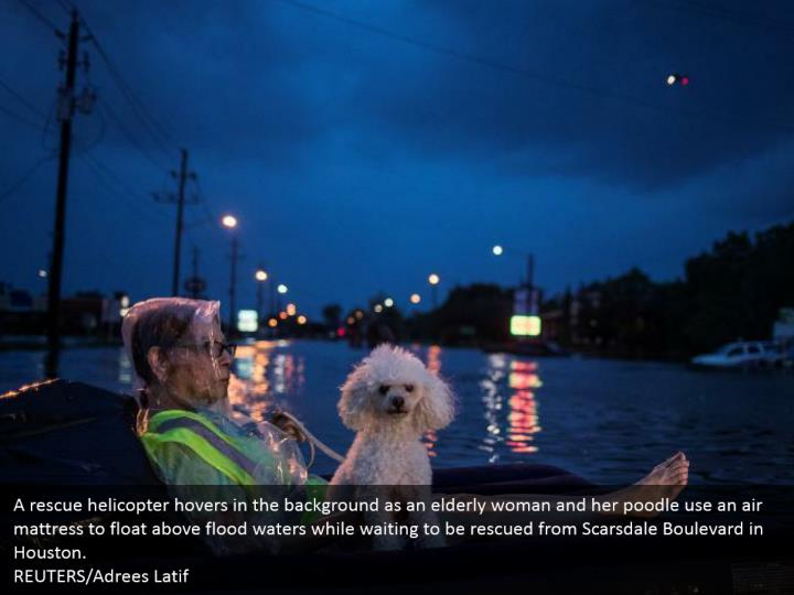 A rescue helicopter hovers in the background as an elderly woman and her poodle use an air mattress to float above flood waters while waiting to be rescued from Scarsdale Boulevard in Houston.  REUTERS/Adrees Latif
