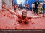 a reveller slides in tomato pulp during