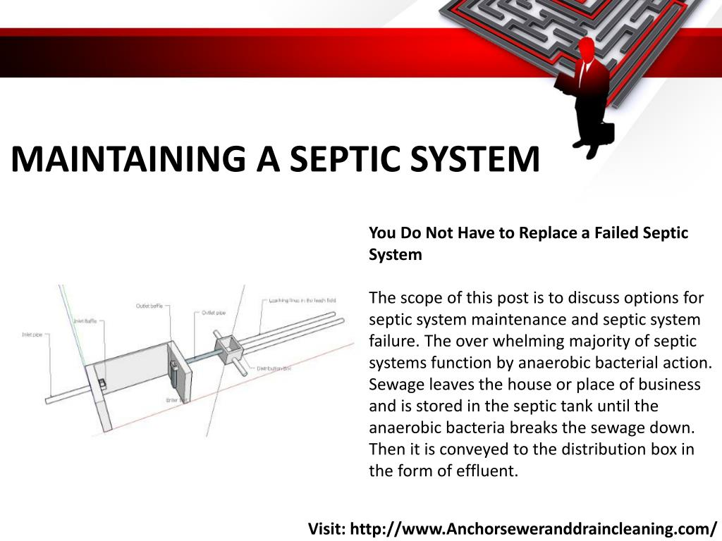 PPT - Septic Tank Problems PowerPoint Presentation - ID:7679235