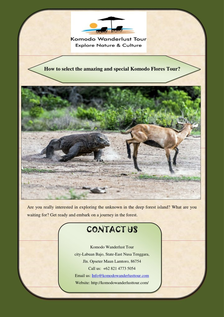 how to select the amazing and special komodo n.