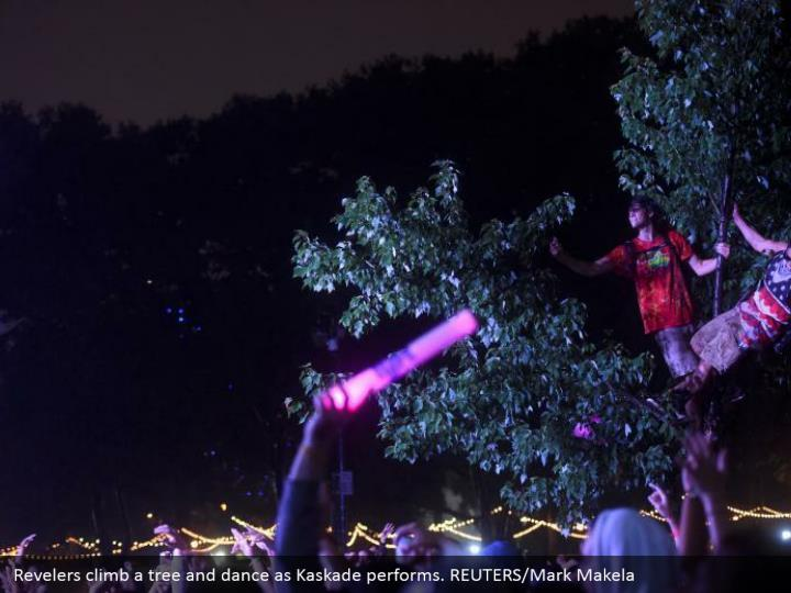 Revelers climb a tree and dance as Kaskade performs. REUTERS/Mark Makela
