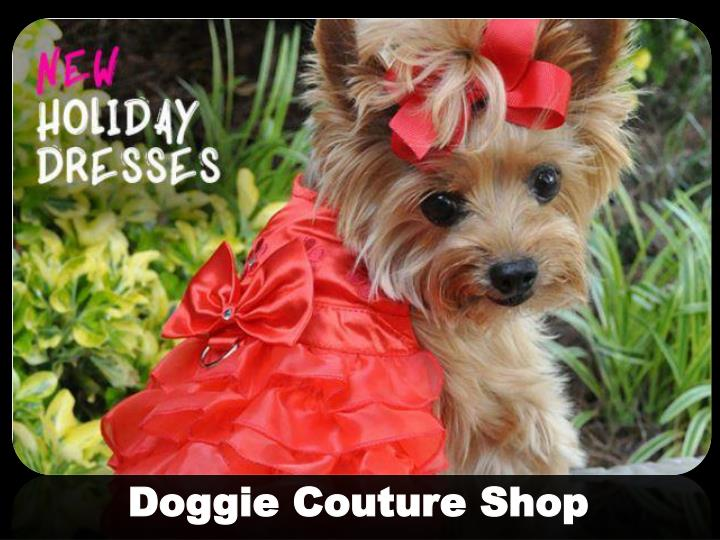 doggie couture shop n.