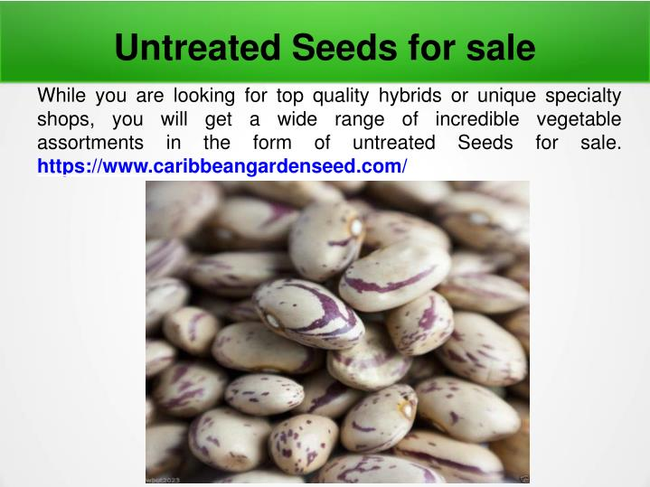 untreated seeds for sale n.