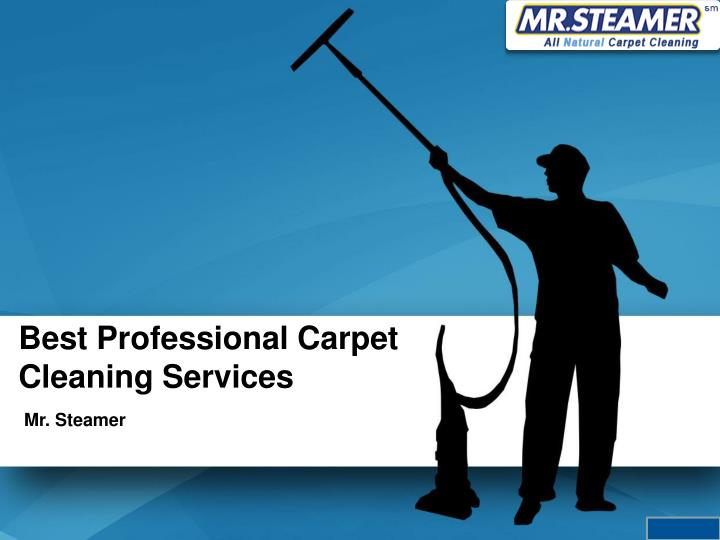 best professional carpet cleaning services n.