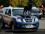 a police dog rides on the front of a patrol