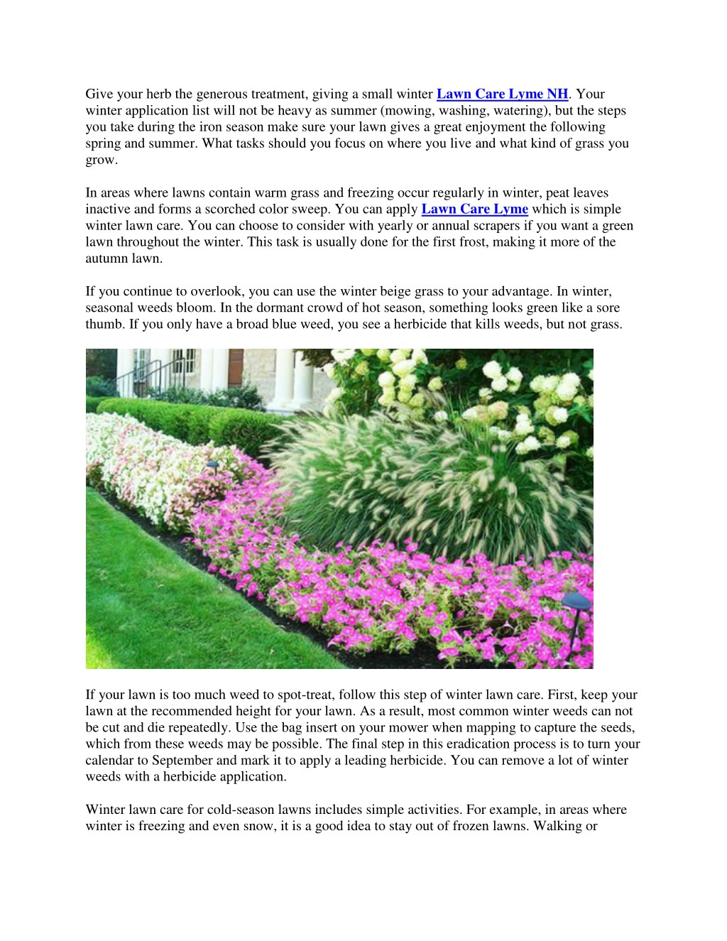 Ppt Winter Lawn Care Tipch