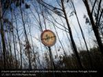 a burnt speed limit sign is seen after a forest