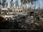 burnt vehicles are seen after a forest fire