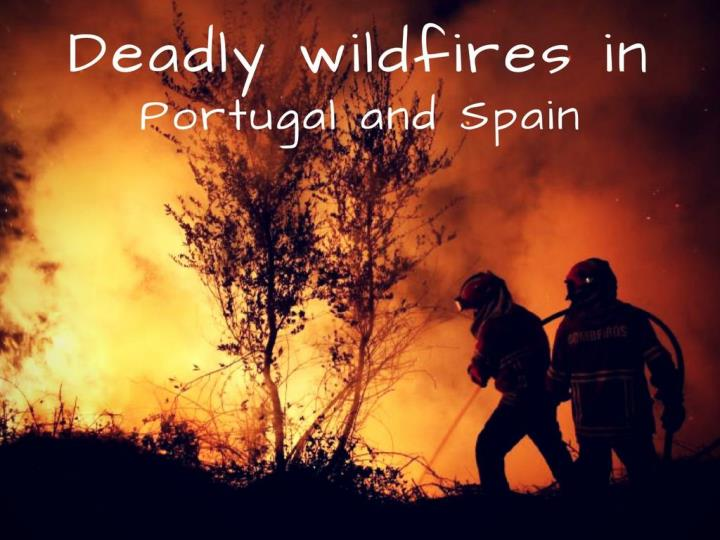 deadly wildfires in portugal and spain n.