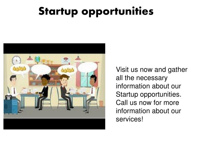 startup opportunities n.