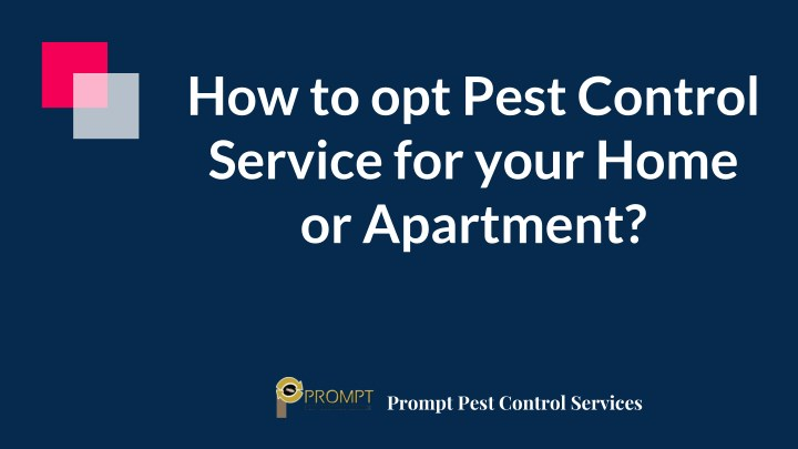 how to opt pest control service for your home n.