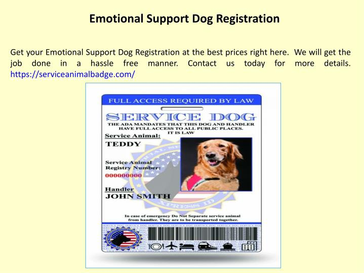 Ppt Service Animal Id Powerpoint Presentation Free Download Id 7738406