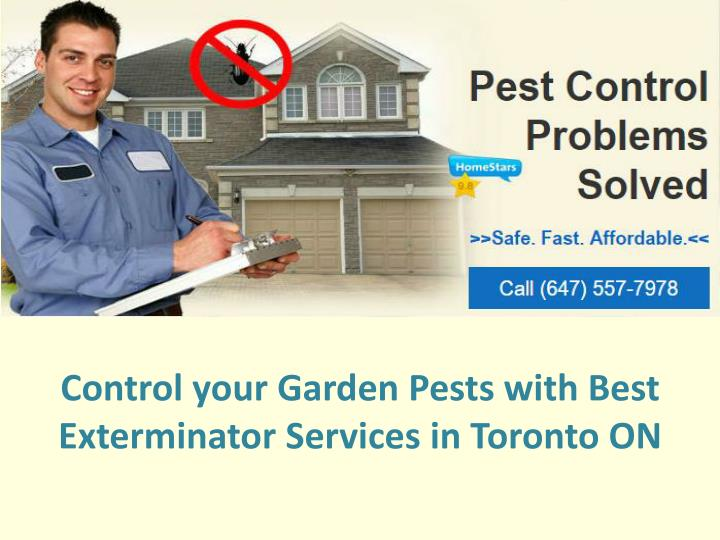 control your garden pests with best exterminator services in toronto on n.