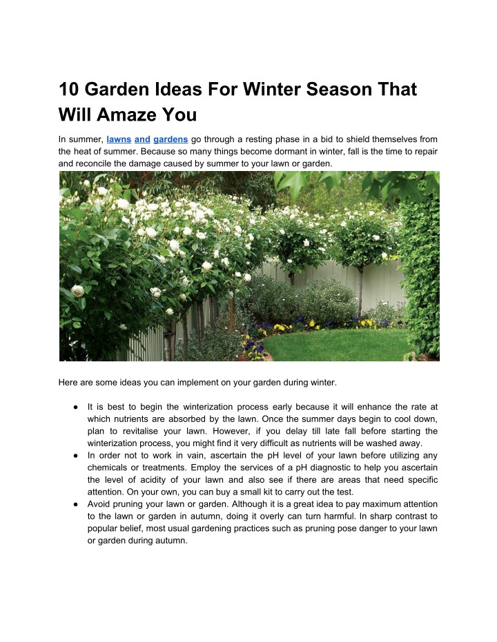 10 garden ideas for winter season that will amaze n.