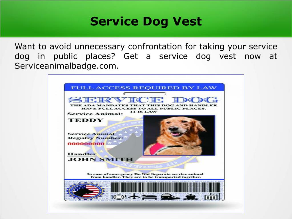 PPT - Service dog tag PowerPoint Presentation, free download