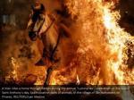 a man rides a horse through flames during