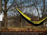 marcus gruley lays in a hammock in a park