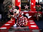 the character of minnie mouse poses on her star