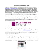 professional accountants in cyprus