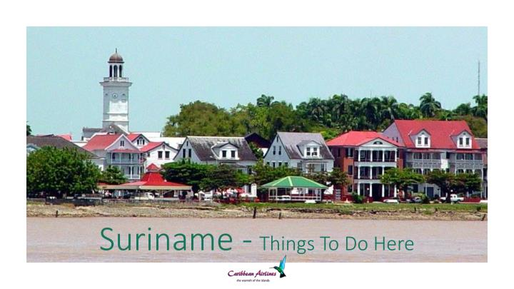 suriname things to do here n.