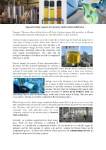 approach leading company for enzymatic biodiesel
