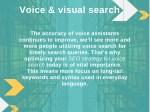 voice visual search