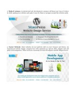 3 make it unique a professional web development