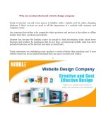 why you need professional website design company