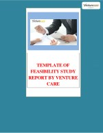 template of feasibility study report by venture