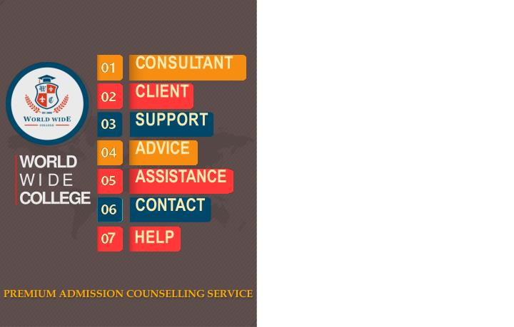 c onsu l t ant client support advice assistance n.