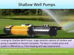 shallow well pumps