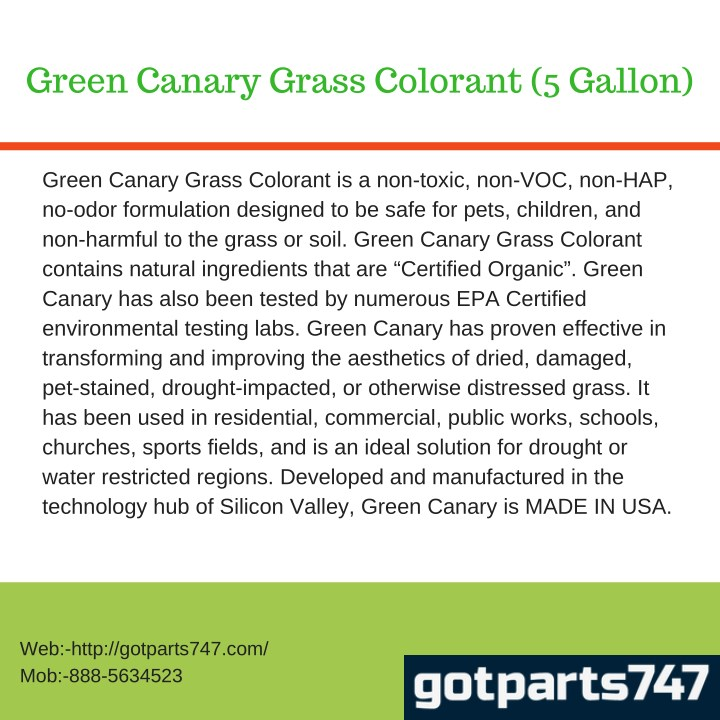 green canary grass colorant 5 gallon n.