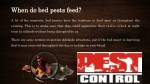 when do bed pests feed when do bed pests feed
