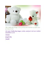 this teddy day images show purity and cleanness